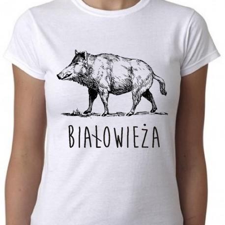koszulka białowieża dzik