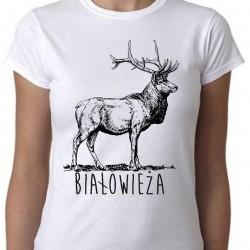 koszulka białowieża jeleń