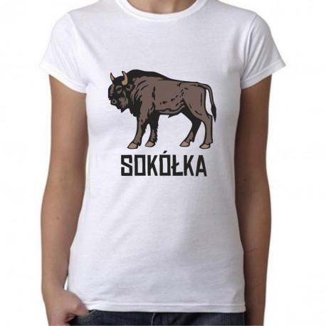 koszulka Sokółka żubr